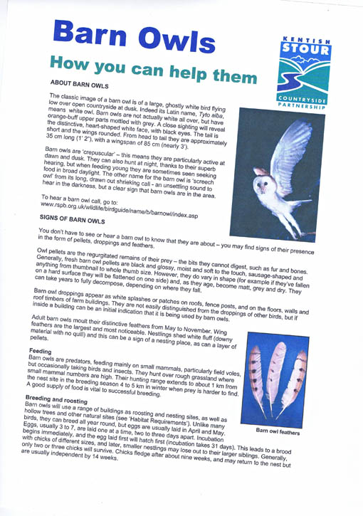 Barn owl leaflet