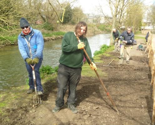 Volunteers preparing soil for sowing and planting