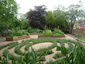lavender maze